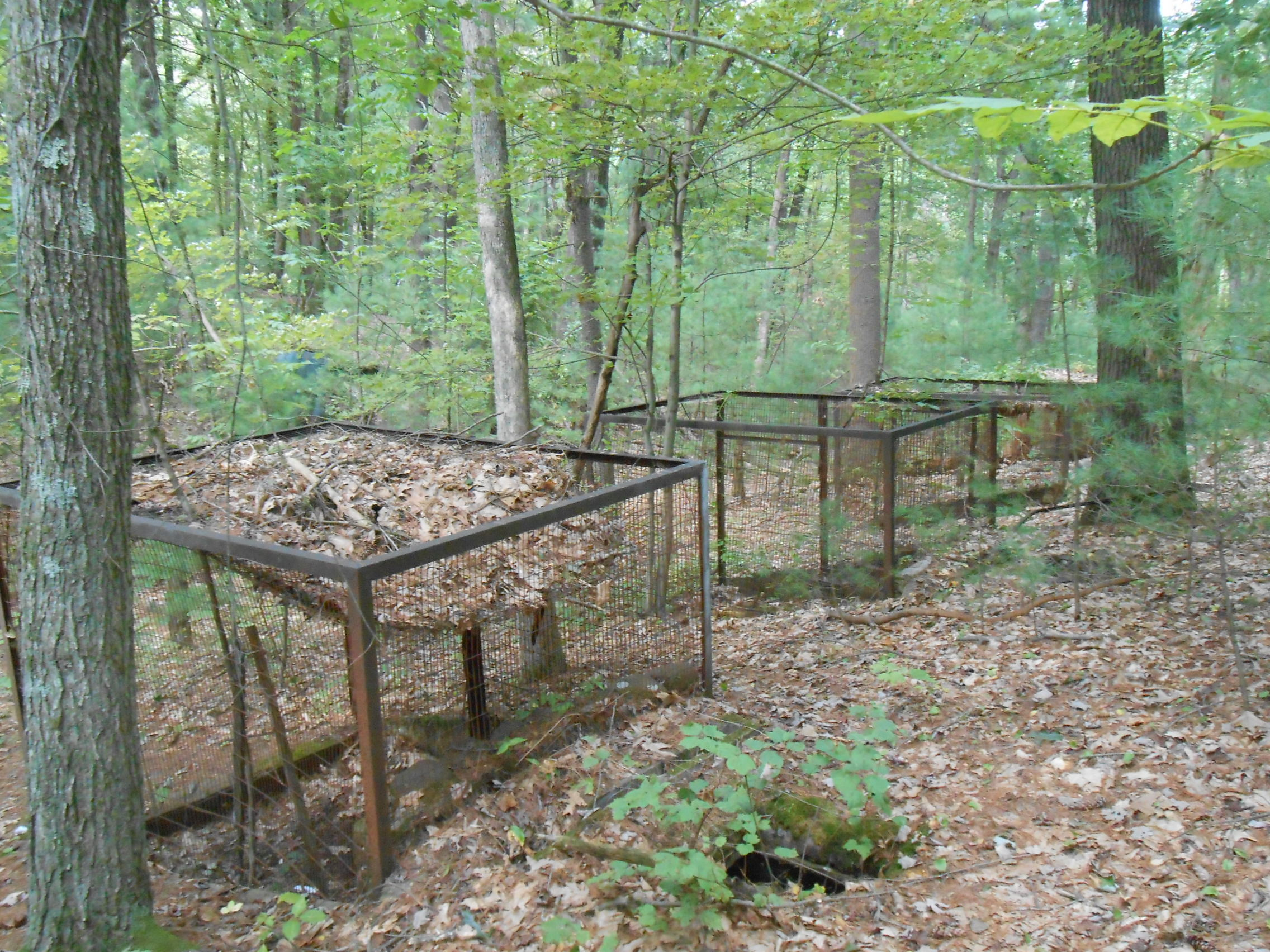 more cages for Shade Swamp Zoo